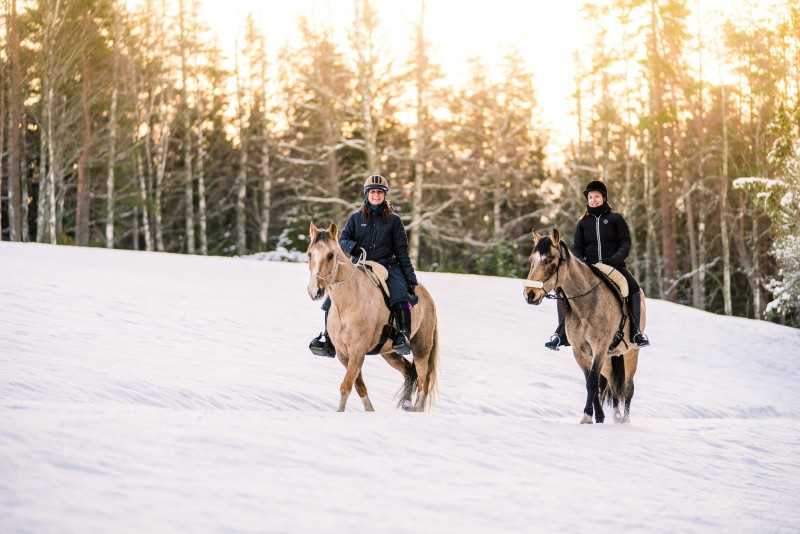 Snow horseback riding - Swedish winter, Tiveden Sweden