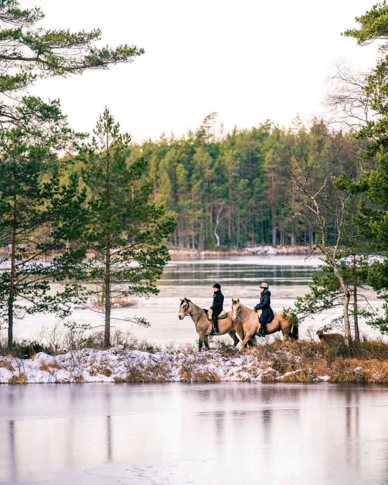 Turridning i Ösjonäs - Tiveden nationalpark, Sverige