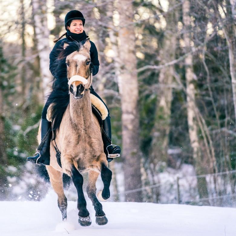 Winter horseback riding galloping in snow