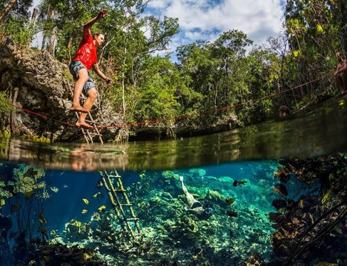 Over-under split photo of Matt walking the slackline over our secret cenote in the Mexican jungle. Why? Because he can. #slackline #underwater #cenote #mexico #over-under