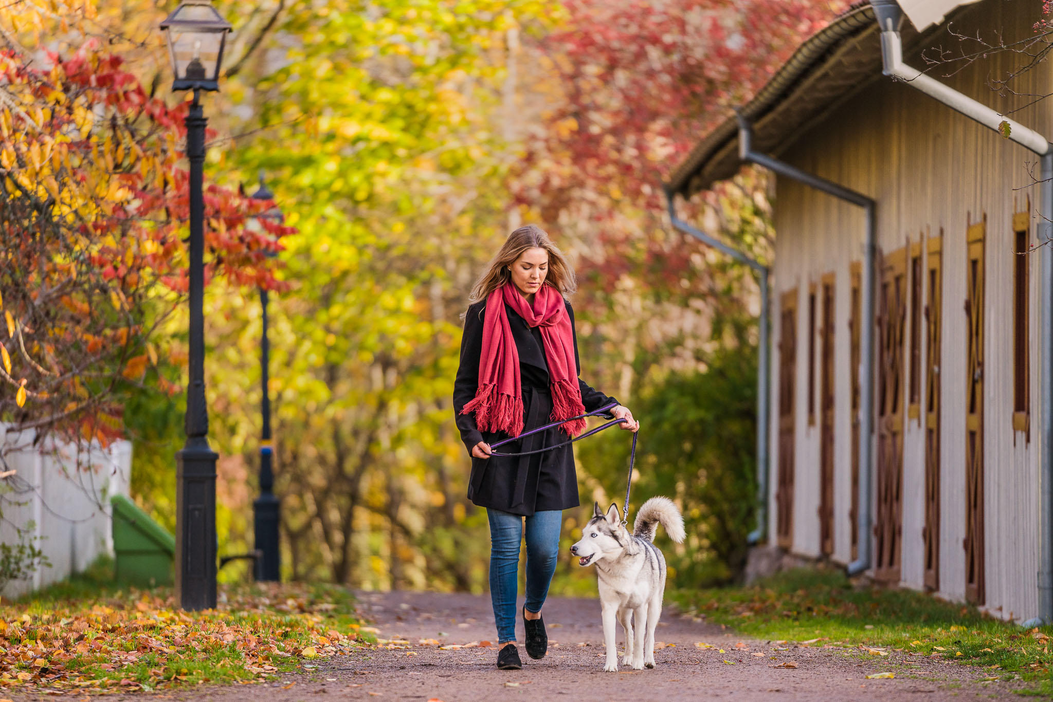 hjo-sweden-woman-walk-with-dog-autumn