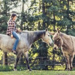 blind-horse-lea-cowgirl-louise-donkey-snickers-portrait-photography