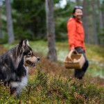 sverige-utomhus-natur-friluftsliv-hund-plocka-svamp-bar-host