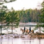 sverige-utomhus-natur-friluftsliv-rida-vinter-hastar