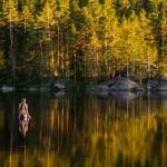 sverige-utomhus-natur-friluftsliv-skog-sjo-vatten-bada