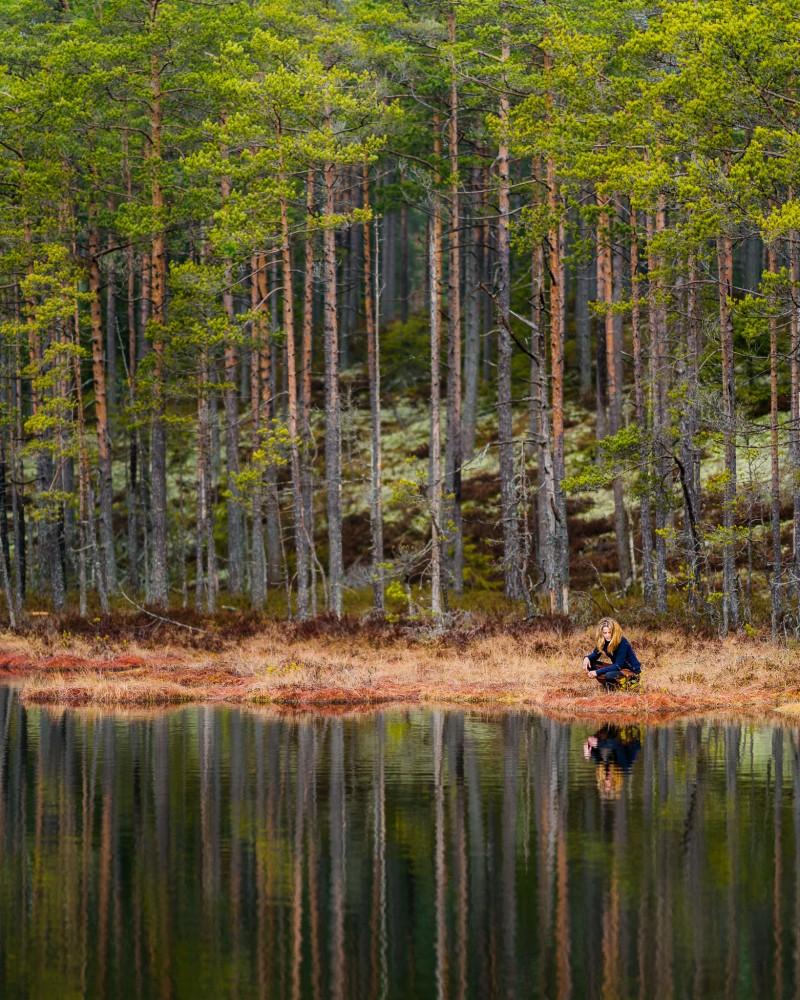 sverige-utomhus-natur-friluftsliv-skog-trad-kvinna