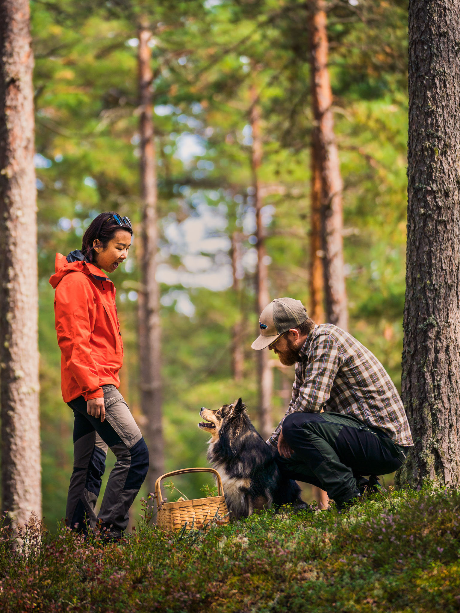 sweden-nature-outdoor-foraging-dog-couple