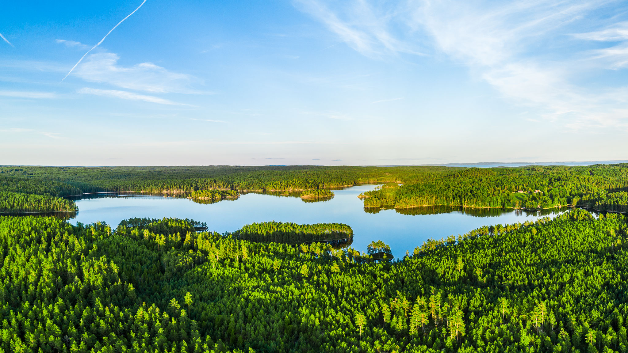 nature sweden outdoor aerial forest roam freedom anhede