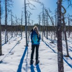 sweden-nature-outdoor-winter-snow-snowshoes-hike