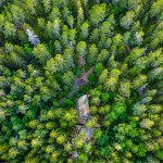 genre-image-industry-photographer-forest-pulp-paper-sweden -aerial-photography