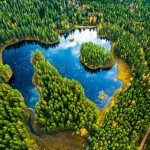 genre-image-industry-photographer-forest-pulp-paper-sweden -drone-photography