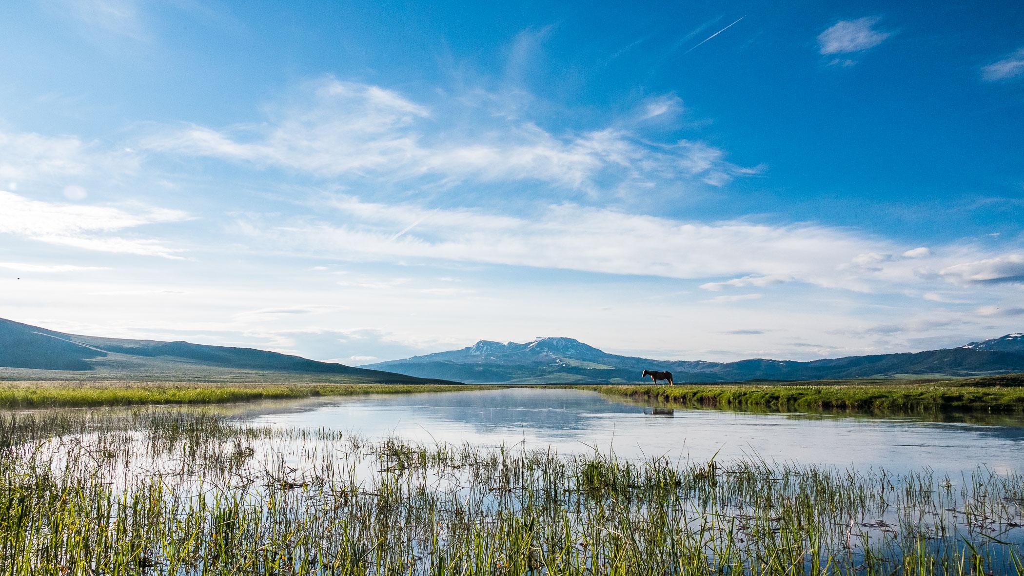 horse-centennial-valley-montana-usa-landscape-photographer-jesper-anhede-01071-sony-rx10